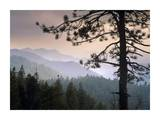 View over foothills to the west from Kings Canyon National Park, California Posters par Tim Fitzharris