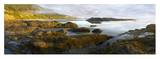 Panorama of Neptune Beach with exposed tide pools at low tide, Oregon Prints by Tim Fitzharris