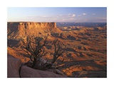 View from Green River overlook, Canyonlands National Park, Utah Posters by Tim Fitzharris