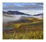 Fog over tundra, Tombstone Range, Tombstone Territorial Park, Yukon, Canada Art by Tim Fitzharris