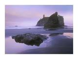 Ruby Beach with seastacks and boulders, Olympic National Park, Washington Posters by Tim Fitzharris