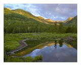 Pond and boreal forest, Ruby Range near Crested Butte, Colorado Poster by Tim Fitzharris