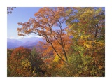 Great Smoky Mountains from, Blue Ridge Parkway, North Carolina Posters by Tim Fitzharris