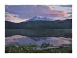 Mount Rainier and Reflection Lake, Mount Rainier National Park, Washington Posters by Tim Fitzharris