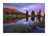 Mount Baldy at sunset reflected in lake along Paradise Divide, Colorado Prints by Tim Fitzharris