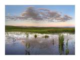 Reflection of clouds in the water, Arapaho National Wildlife Refuge, Colorado Posters by Tim Fitzharris