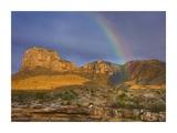 Rainbow near El Capitan, Guadalupe Mountains National Park, Texas Prints by Tim Fitzharris