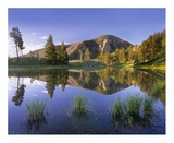 Bunsen Peak reflected in lake, Yellowstone National Park, Wyoming Print by Tim Fitzharris