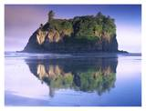 Abbey Island looms over Ruby Beach, Olympic National Park, Washington Posters by Tim Fitzharris