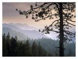 View over foothills to the west from Kings Canyon National Park, California Affiches par Tim Fitzharris