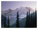Mt Rainier as seen at sunrise, Mt Rainier National Park, Washington Prints by Tim Fitzharris