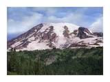 Mount Rainier with coniferous forest, Mount Rainier National Park, Washington Posters by Tim Fitzharris