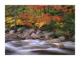 Autumn along Swift River, White Mountains National Forest, New Hampshire Prints by Tim Fitzharris