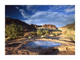 Water pothole at Panorama Point, Capitol Reef National Park, Utah Prints by Tim Fitzharris
