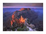 Wotans Throne at sunrise from Cape Royal, Grand Canyon National Park, Arizona Prints by Tim Fitzharris