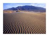 Tucki Mountain and Mesquite Flat Sand Dunes, Death Valley National Park, California Posters by Tim Fitzharris