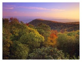 Blue Ridge Mountains with deciduous forests in autumn, North Carolina Prints by Tim Fitzharris