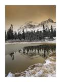 Canadian Rocky Mountains dusted in snow, Banff National Park, Alberta, Canada Posters by Tim Fitzharris