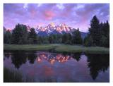 Teton Range at sunrise, Schwabacher Landing, Grand Teton National Park, Wyoming Posters by Tim Fitzharris