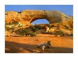 Wilson Arch with a span of 91 feet and height of 46 feet, made of entrada sandstone, Utah Art by Tim Fitzharris