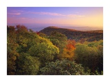 Blue Ridge Mountains with deciduous forests in autumn, North Carolina Posters by Tim Fitzharris