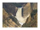 Lower Yellowstone Falls and Grand Canyon of Yellowstone National Park, Wyoming Posters by Tim Fitzharris