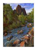 Mt. Spry with the Virgin River surrounded by Cottonwood trees, Zion National Park, Utah Art by Tim Fitzharris