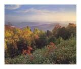 Deciduous forest in autumn, Blue Ridge Mountains from Doughton Park, North Carolina Prints by Tim Fitzharris