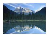 Mt Robson reflected in lake, British Columbia, Canada Posters by Tim Fitzharris