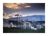 Norris Geyser basin with steam plumes from geysers, Yellowstone National Park, Wyoming Prints by Tim Fitzharris