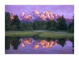 Grand Tetons at Schwabacher Landing, Grand Teton NP, Wyoming Plakat av Tim Fitzharris
