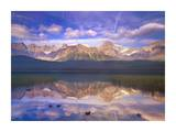 Mount Chephren reflected in Waterfowl Lake, Banff National Park, Alberta, Canada Posters by Tim Fitzharris