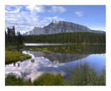 Mount Rundle and boreal forest reflected in Johnson Lake, Banff National Park, Alberta, Canada Plakater af Tim Fitzharris