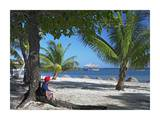 Tourist resting under palm trees on beach at Palmetto Bay, Roatan Island, Honduras Prints by Tim Fitzharris