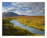 North Klondike River flowing through tundra beneath the Ogilvie Mountains, Yukon Territory, Canada Posters by Tim Fitzharris