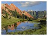Red Mountain gets its color from iron ore in the rock, Gray Copper Gulch, Colorado Prints by Tim Fitzharris