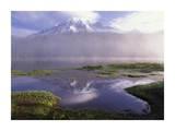 Mt Rainier, an active volcano encased in snow, Mt Rainier National Park, Washington Posters by Tim Fitzharris