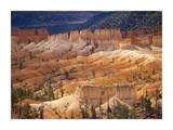 Landscape of eroded formations called hoodoos and fins, Bryce Canyon National Park, Utah Posters by Tim Fitzharris