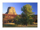 Devil's Tower National Monument showing famous basalt tower, Wyoming Prints by Tim Fitzharris