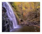 Crabtree Falls cascading into stream in autumn forest, Blue Ridge Parkway, North Carolina Posters by Tim Fitzharris