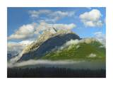 Mt Kidd with slopes covered in coniferous forest, Kananaskis Country, Alberta, Canada Prints by Tim Fitzharris