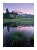 Mt Rainier reflected in lake, Mt Rainier National Park, Washington Print by Tim Fitzharris