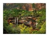 Cascades tumbling 110 feet at Emerald Pools, Zion National Park, Utah Posters by Tim Fitzharris