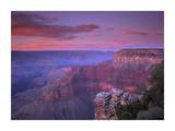 View of the South Rim from Pima Point, Grand Canyon National Park, Arizona Posters by Tim Fitzharris