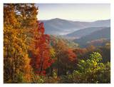 Autumn foliage on Blue Ridge Range near Jumping Off Rock, North Carolina Poster by Tim Fitzharris