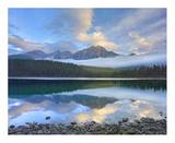 Pyramid Mountain reflected in Patricia Lake, Jasper National Park, Alberta, Canada Posters by Tim Fitzharris