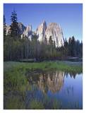 Cathedral Rock reflected in the Merced River, Yosemite NP, California Posters by Tim Fitzharris