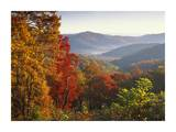 Autumn foliage on Blue Ridge Range near Jumping Off Rock, North Carolina Prints by Tim Fitzharris