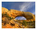 Wilson Arch with a span of 91 feet and height of 46 feet, made of entrada sandstone, Utah Print by Tim Fitzharris