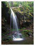 Grotto Falls and Roaring Fork Motor Nature Trail, Great Smoky Mountains Posters by Tim Fitzharris